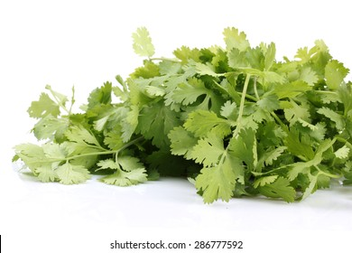 Bunch of fresh green parsley on a light background. Isolation.