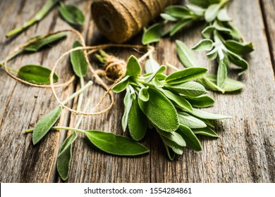Bunch of fresh green sage leaves on the rustic background. Selective focus.