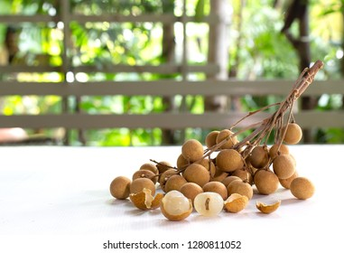 Bunch of Fresh Longan on white table in the green garden / Blurred and select focus and space for texts