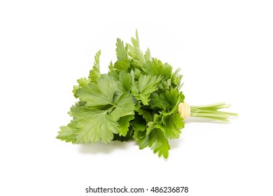 A bunch of fresh parsley on a white background
