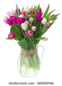 bunch of fresh purple, pink and white tulip flowers  isolated on white background