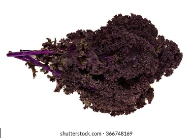 Bunch of fresh red kale over a white background