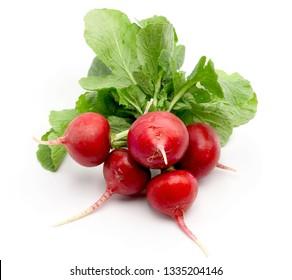 Bunch of fresh red radish on white background