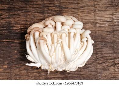 Bunch of fresh 'White shimeji mushroom' on wooden table top.