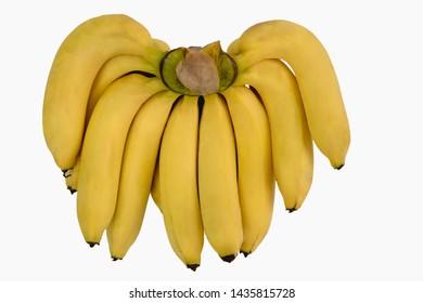 Bunch of fresh yellow bananas,Gros Michel banana isolated on white background