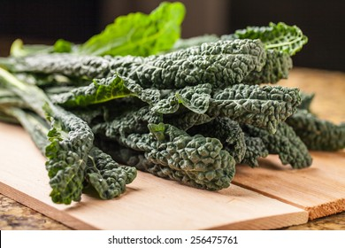 Bunch of freshly harvested lacinato kale with studio lighting