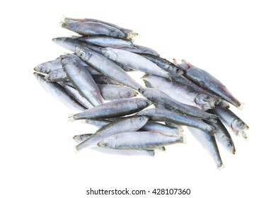 Bunch of frozen sprat fish isolated on white background