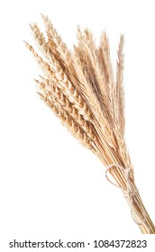 Bunch of golden wheat ears isolated on white
