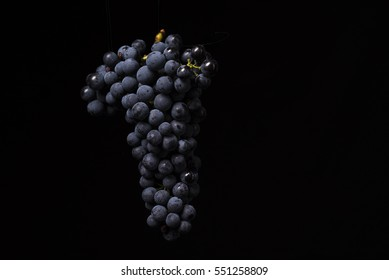 Bunch of grapes with black background
