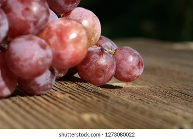 Bunch of grapes hanging on a brick wall an old, country house. An element of outdoor decoration on the occasion of a harvest festival at the end of summer.
