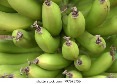 Bunch of green bananas.