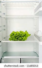 The bunch of green fresh salad lays in an empty refrigerator