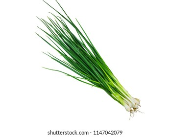 Bunch of green onions isolated on white background
