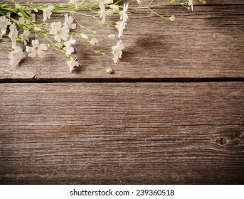 bunch of Gypsophila on old wooden table