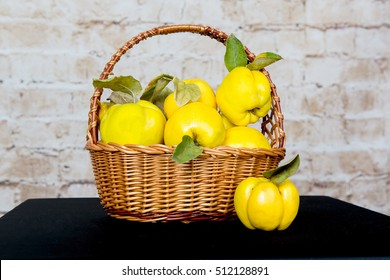 Bunch of juicy yellow quinces fruits. Quince. Basket with delicious juicy quince. Vintage quince late autumn.