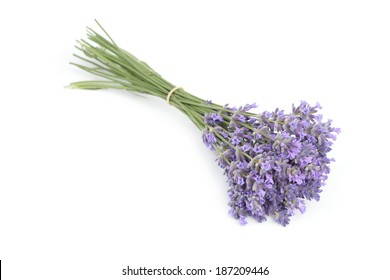 Bunch of lavender flowers isolated on white