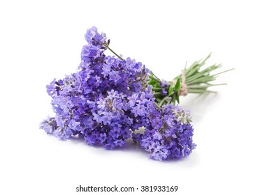 Bunch of lavender flowers isolated on a white background