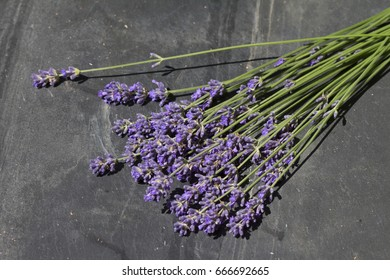 bunch of lavender on plate of slate