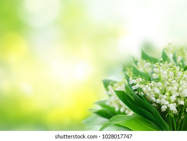 Bunch of Lilly of valley flowers on green garden background