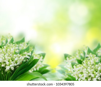 Bunch of Lilly of valley flowers over green garden background with copy space