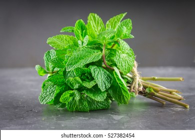 A bunch of mint, spearmint, peppermint tied with twine on a gray background.  mint-flavored leaves. Mint bunch.