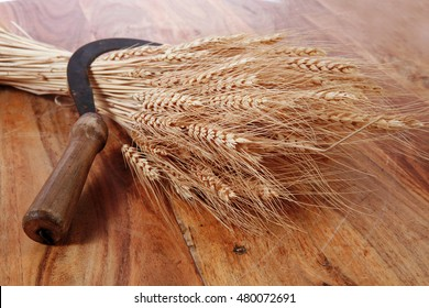 bunch of mown wheat ears with vintage handmade reaper hook sickle on light wooden table