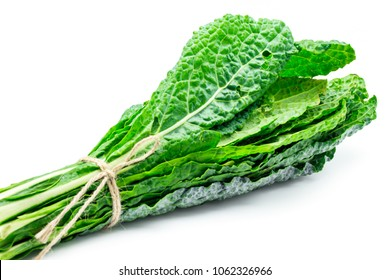 Bunch of organic kale, Lacinato Kale, freshly harvested isolated on white background with copy space. Kale is a super food, Healthy raw eating.