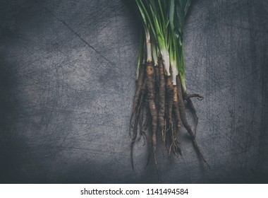 Bunch of organic salsify with green branches layed on the top of scratchy background