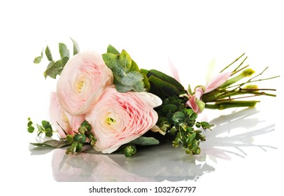 bunch of pale pink ranunculus (persian buttercup); isolated on white background;