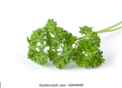 bunch of parsley leaves isolated on white