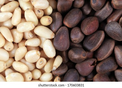 Bunch of pine nuts black and white. Close up. Whole background.