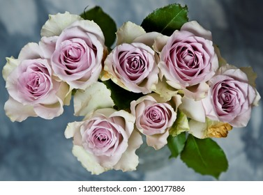 A bunch of pink beautiful roses