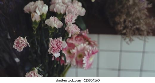 Bunch of Pink Carnation Flower Beautiful