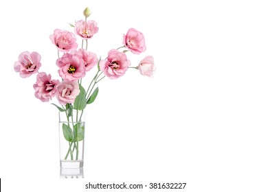 bunch of pink eustoma flowers in glass vase isolated on white