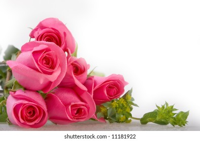Bunch of pink roses - More flowers in my portfolio!!!!