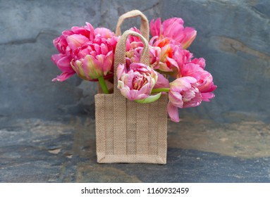 Bunch of pink tulips in a hessian bag