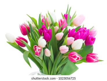 Bunch of pink and violet tulips flowers isolated on white background