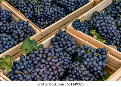 Bunch of purple grape in brown wooden box