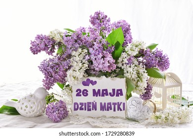 bunch of purple and white lilac blossoms for Mother's Day with greeting card in Polish language isolated on white
