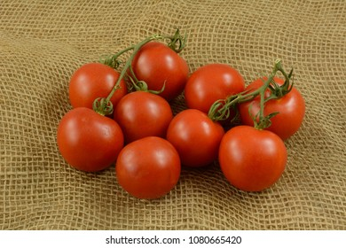 Bunch of red ripe campari on vine tomatoes on burlap