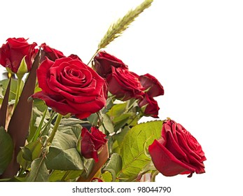 A bunch of red roses isolated in a white background