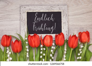 """Bunch of red tulips and lily of the valley flowers on light wood with black board. Chalk text on the board """"Endlich fruhling"""" means """"Finally Spring"""" in German. - Shutterstock ID 1269566758"""