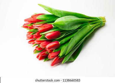 A bunch of red tulips on a white background