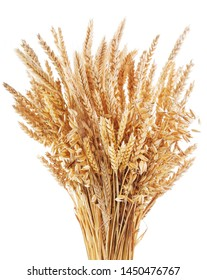 Bunch of ripe cereal. Mix of wheat ears, rye, barley and oats isolated on white background