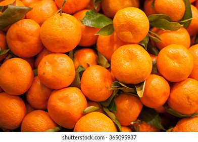 Bunch of Small Oranges in a Bin