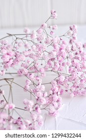 Bunch of small pink flowers on white background