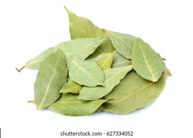 A bunch of spices, a dry Laurel leaf isolated on white background.