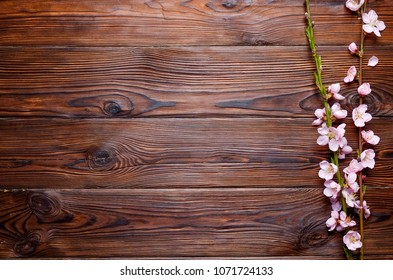 Bunch of spring flowering branches with a lot of pink blossoms on dark brown wooden background. Rustic composition with spring flowers on vintage textured wood table. Close up, copy space, top view.