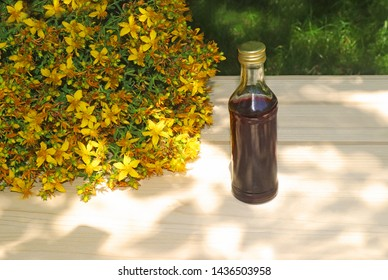 bunch of St. John's wort blossoms and a bottle with St. John's wort oil on a wooden table in a garden