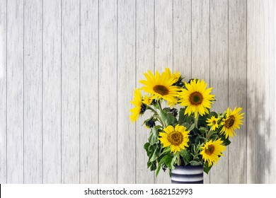 A bunch of sunflowers in a black vase on a rustic white wooden table with copy space